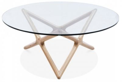 Niga Designer Glass Coffee Table With A Natural Frame 3