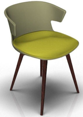 Elegante Designer Chair With Seat Pad - Green And Wenge Light Green