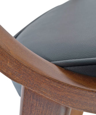 Costro Designer Dining Chair Zoom View