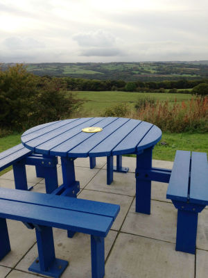 Olympic Bench - Blue